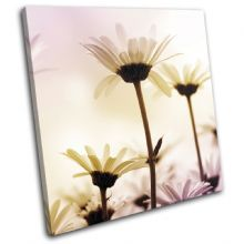 Daisies Flowers Floral - 13-1304(00B)-SG11-LO